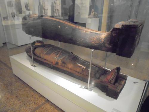 Wooden Sarcophagus with mummy Hapi